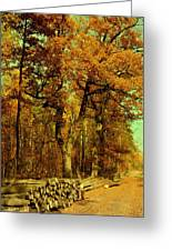Autumn In Forest Greeting Card