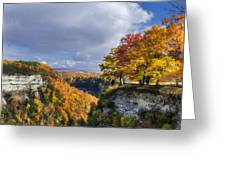Autumn In Letchworth Greeting Card