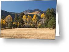 Autumn In Lockett Meadow Greeting Card