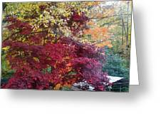 Autumn In October Greeting Card