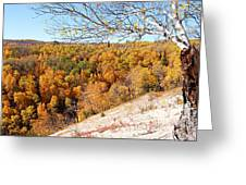 Autumn In Riding Mtn National Park Greeting Card