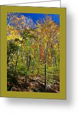 Autumn In Schooley's Mountain Park 2 Greeting Card