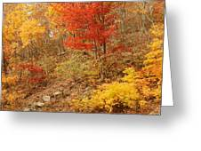 Autumn In Shenandoah Greeting Card