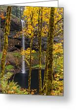 Autumn In Silver Falls Greeting Card