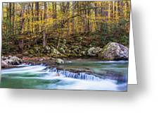 Autumn In Smoky Mountains National Park  Greeting Card