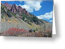 Autumn In The Aspen Hills Greeting Card