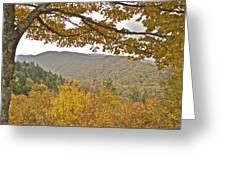 Autumn In The Smokies Greeting Card by Michael Peychich