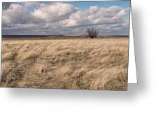 Autumn In The Steppes Greeting Card