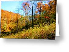 Autumn In The Tennessee Hills Greeting Card