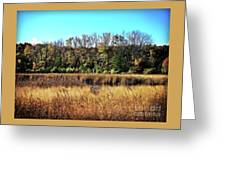 Autumn In The Wetlands Greeting Card