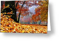 Autumn In The Woodland Greeting Card