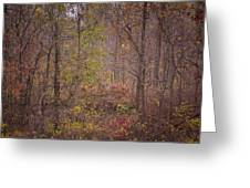 autumn In The Woos Greeting Card