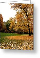Autumn In Turin, Italy Greeting Card