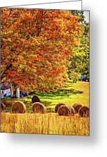 Autumn In West Virginia Greeting Card