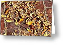 Autumn Is On The Way Greeting Card