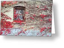 Autumn Ivy Greeting Card