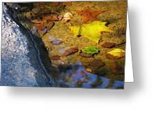 Autumn Jewels Greeting Card