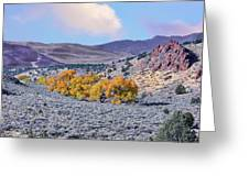 Autumn Landscape In Northern Nevada. Greeting Card