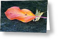 Autumn Leaf In August Greeting Card