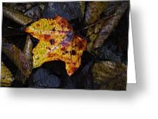 Autumn Leaf On Ground Greeting Card