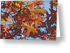 Autumn Leaves 17 - Variation  2 Greeting Card