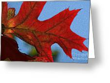 Autumn Leaves 18 Greeting Card
