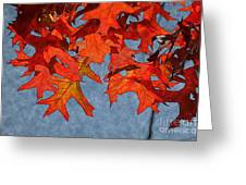 Autumn Leaves 19 Greeting Card