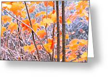 Autumn Leaves 2 Pdae Greeting Card