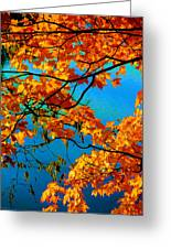Autumn Leaves 7 Greeting Card