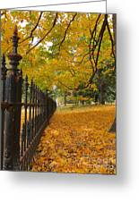 Autumn Leaves At Lafayette Park Greeting Card