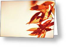 Autumn Leaves Border Greeting Card