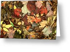 Colorful Autumn Leaves In Blue Green Red Yellow Orange Greeting Card