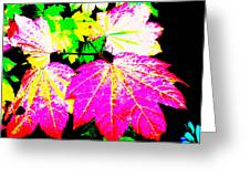 Autumn Leaves Holiday Style Greeting Card