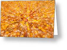 Autumn Leaves II Greeting Card