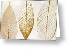 Autumn Leaves IIi Fallen Gold Greeting Card