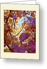 Autumn Leaves In Blue Sky Greeting Card