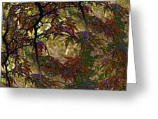 Autumn Leaves In Kyoto Greeting Card