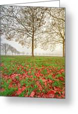 Autumn Leaves Near To Far Super High Resolution Greeting Card