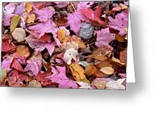 Autumn Leaves On The Forest Floor Greeting Card