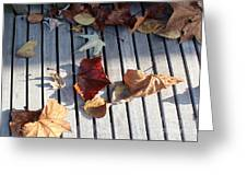 Autumn Leaves Three Greeting Card