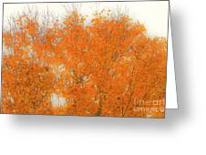 Autumn Leaves2 Greeting Card