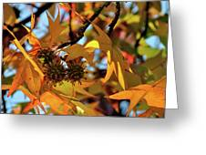 Autumn Leaves4 Greeting Card