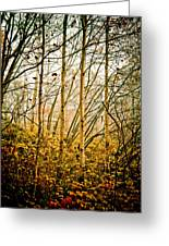 autumn Lines Greeting Card