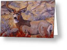 Autumn Majesty Greeting Card by Debra Mickelson
