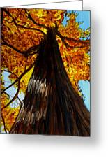 Autumn Majesty Greeting Card