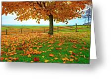 Autumn Maple Tree And Leaves Greeting Card