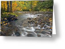 Autumn Meander Greeting Card by Mike  Dawson