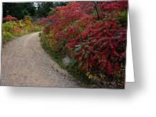 Autumn Mesa Trail Greeting Card