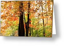 Autumn Mix Greeting Card