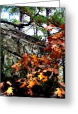 Autumn Moss Greeting Card